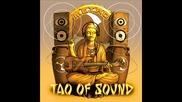 Tao Of Sound - The Field (feat. Kitaro) from Metro