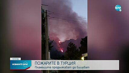 ПОЖАРИТЕ В ТУРЦИЯ: Разказ от българи, срещнали се с огнената стихия