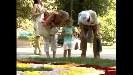 Брюкселски килим в София