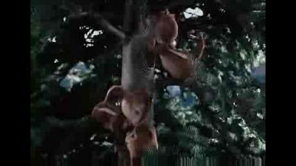 Кой каза , че катеричките не можели да пеят?