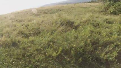 С Гопро по полянката