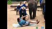 Слонски масаж
