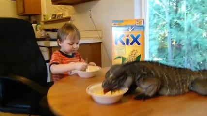 Да закусваш заедно с игуана