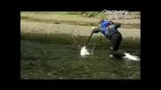 Риболов на сьомга в Аляска