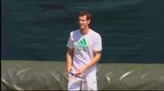 Григор Димитров и останалите тенис звезди тренират преди Уимбълдън