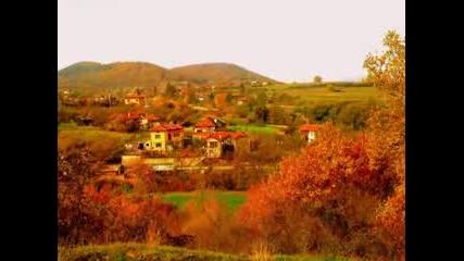 Село Калотина-златна есен 2014 г