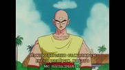 Dragon Ball - 136 - bg sub