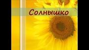 Елена Гудкова - Солнышко