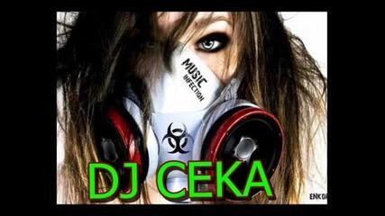 Dj Ceka - House Mix 2013 { 14 }