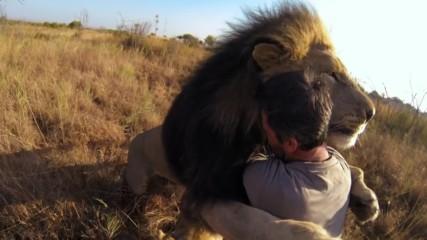 Мъж е приятел с лъвове и хиени !