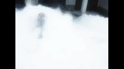 Snow Seekers