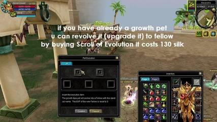 Silkroad Online Fellow Pets