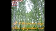 Александр Орехов - Я в весеннем лесу пил берёзовый сок