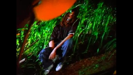 Korn - Shoots And Ladders