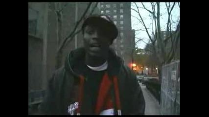Nyc Harlem Gang Bangers