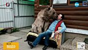 Мечка живее с руско семейство вече 23 години