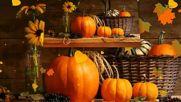 Autumn Still Life! ... ...