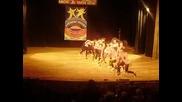 $ Extreme Show Kukli $