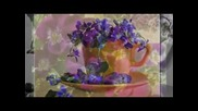 Синеока теменужка - детска песен