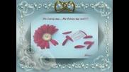 Srebrna Krila - Nek zivi ljubav