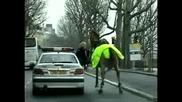 Конят без ездач