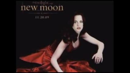 New Moon - No Fear