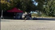 """Американските морски пехотинци се отказаха от ужасяващия робот """" Голямо куче"""""""
