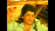 Сашо Роман - Кацнал бръмбар на трънка (1997)