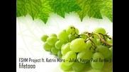 Fshm Project feat. Katrin Moro - Julia (happy Paul Remix)