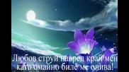 Изгрев - Арабаджиева