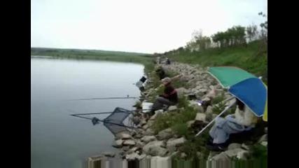 Акция по зарибяване на река Янтра - 1 част