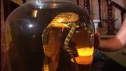 "Полезни отровни змии (""Без багаж"", Виетнам #2)"