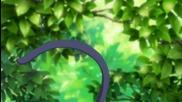 Ikuto - Kitty Cat [shugo Chara] (*)