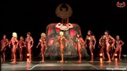 2015 Ifbb Wings of Strength Rising Phoenix Fbb Championships