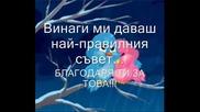За Теб Приятелко Любима!!!.wmv