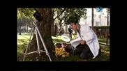 Nickelodeon Big Time Rush Шеметен бяг - сезон 2 - еп.7 Бг Аудио Цял Епизод