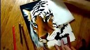 Страхотна рисунка на тигър!