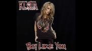 Ke$ha - Boy Like You