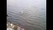 Рибар от Вазово на яз. Ралица