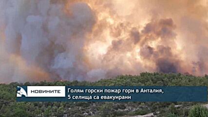 Голям горски пожар гори в Анталия, 5 селища са евакуирани