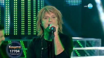 Коцето като Bon Jovi -