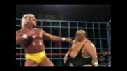 Hulk Hogan Theme - Real American (tribute) Wwf.avi