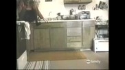 Мишка в кухнята