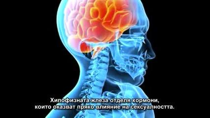 Контрола на съзнанието 3