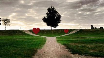 Ennio Morricone - D'amore Si Muore