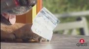 Куче продава хот дог ( Скрита Камера )