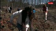 Време за гора – масово залесяване в Седмицата на гората