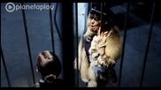 Галена - Запали ( Официално видео, високо качество )