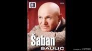 Saban Saulic - Telo uz telo - (Audio 2005)