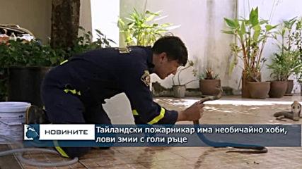 Тайландски пожарникар с необичайно хоби - ловец на змии
